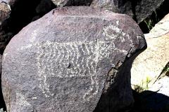 petroglyphs_18