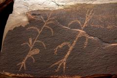 petroglyphs_31