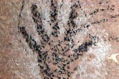 petroglyphs_42